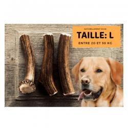 Bois de cerf pour chien entier - taille L